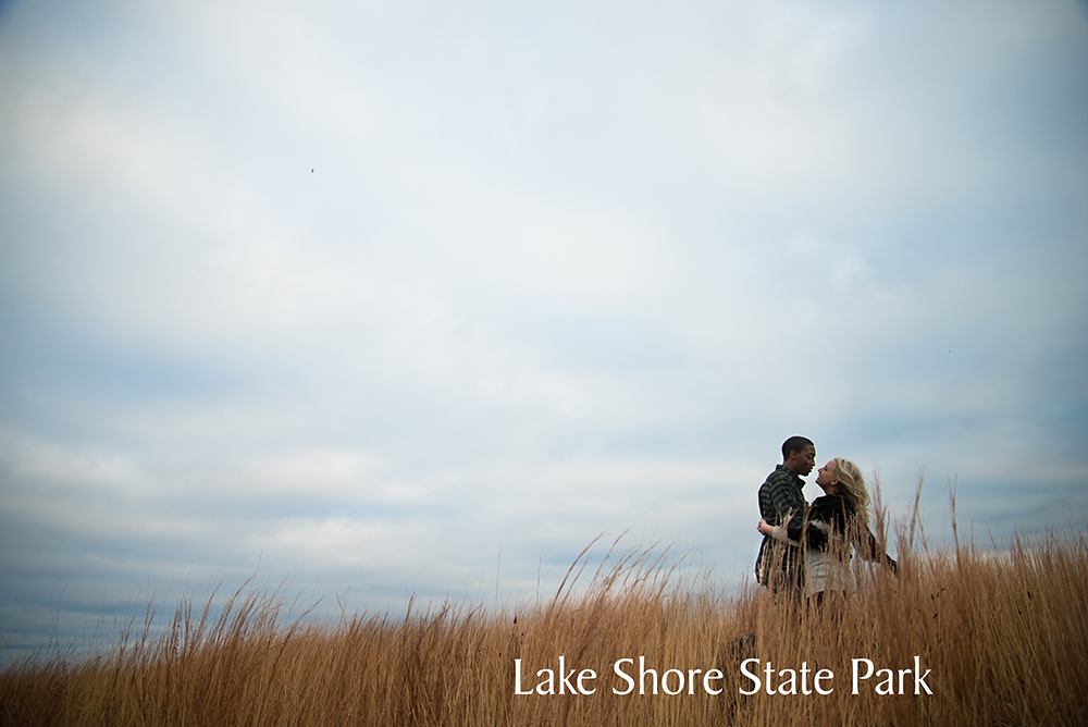 lakeshorestatepark3